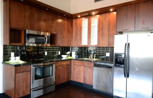 Loft Apartments Be Your San Jose Apartment Stainless